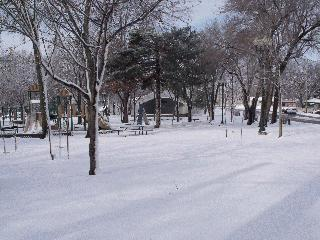 Old Main Street Park in the Winter